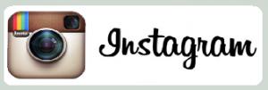 Kontakt Instagram mit Studio Rotterdam Region